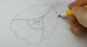 Обвести контур карандашом