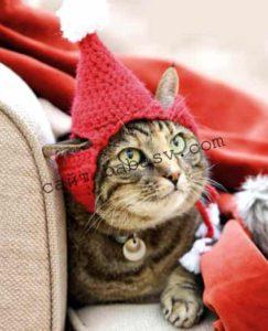 Как связать шапку для кота